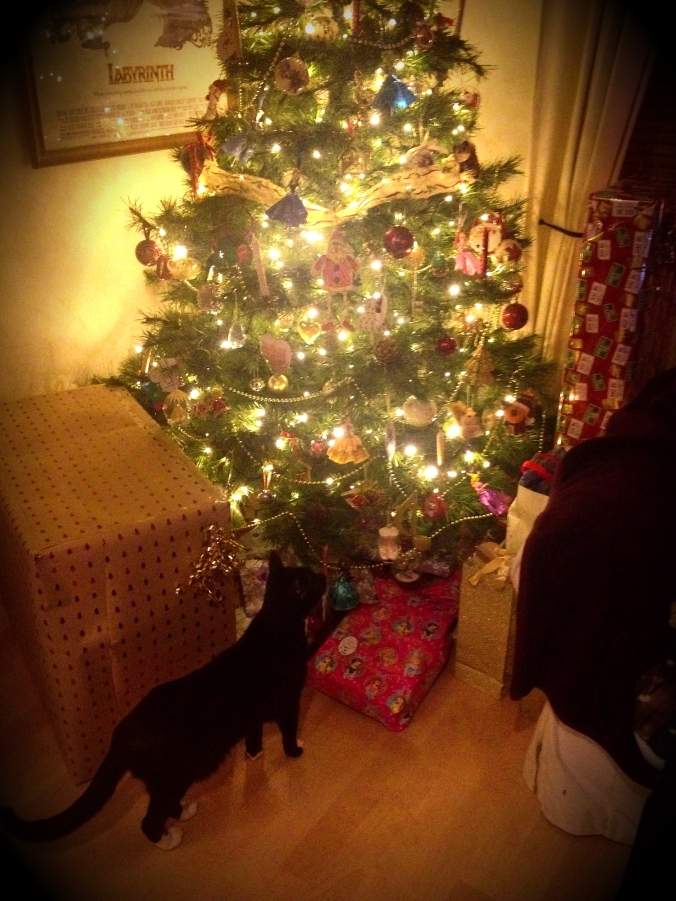 christmascatedit